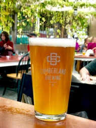 A pint of Forest Fog unfiltered wheat ale