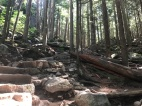Early elevation gain - Sea to Summit Trail